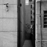 Surveillance #1